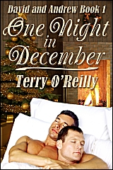 David and Andrew Book 1: One Night in December